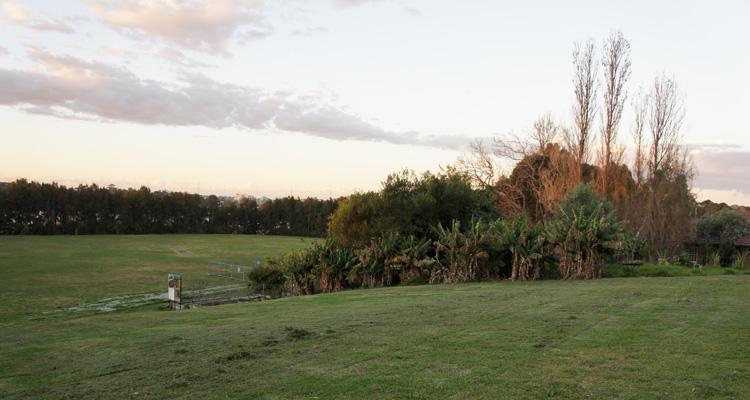 Glovers Garden